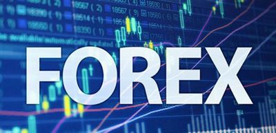 Economics step by step forex